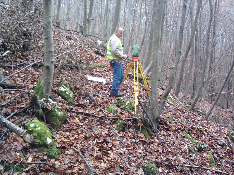 Ureditev meje gozdnih parcel ponavadi izvajamo pozimi, ko ni vegetacije.